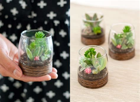 diy succulents 32 creative diy succulent crafts and diys for you to