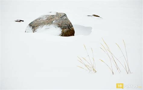 imagenes minimalistas naturaleza 10 fotos de la naturaleza minimalista