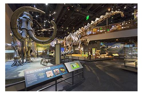 dallas nature and science museum coupons