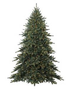 xmas tree png 16 by iamszissz on deviantart