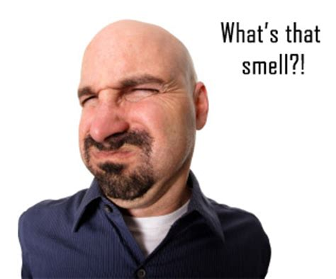 smells bad the spoiled rotten leader smells bad jonathan whistman linkedin