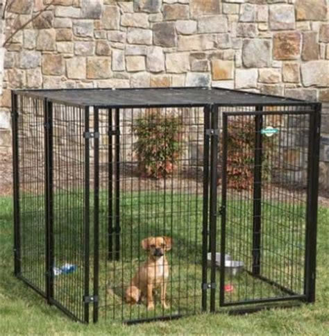 recinti per cani da esterno hairstylegalleries com recinzioni per cani recinzioni