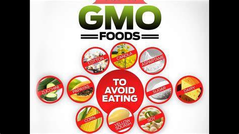 foods to avoid top 10 gmo foods to avoid