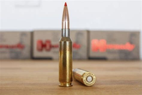 151 best images about calibers ammo on