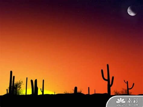 Desert Sunset Scenery Ppt Templates Ppt Desert Powerpoint Background