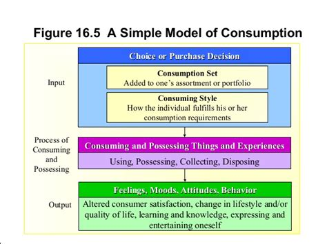 Framework Of Business Mba Notes by Consumer Decision Process