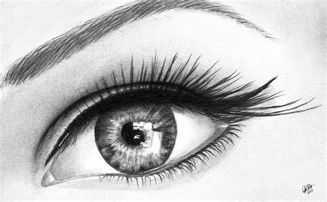 Drawing Of An Eye by Eye Drawing By Chris Cox