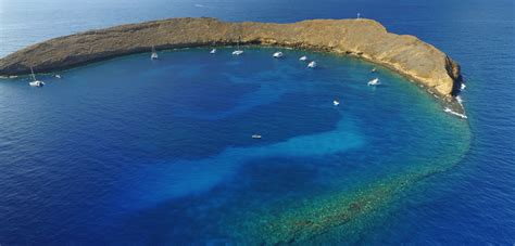 maui boat charters photo gallery maui reef adventures maui snorkel tours