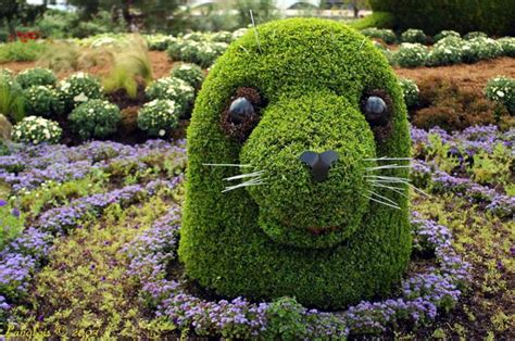 funny and stupid ideas amazing plant sculptures