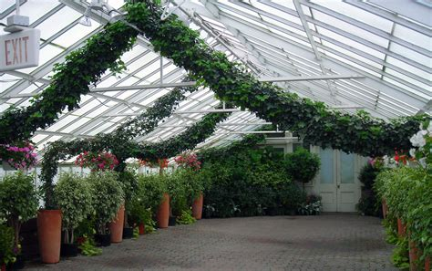 Buffalo Botanical Gardens Arch At Buffalo Erie County Botanical Garden Buffalo Niagaragardening