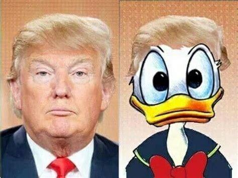 donald trump duck wpi reports marina tsekova donald duck i love you