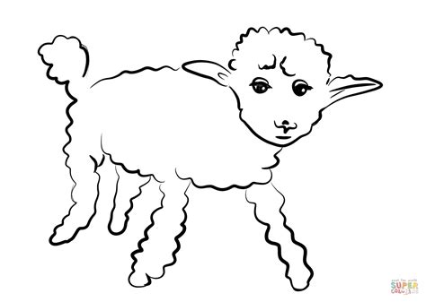 Sheep Coloring Pages by Sickly Sheep Coloring Page Free Printable Coloring Pages