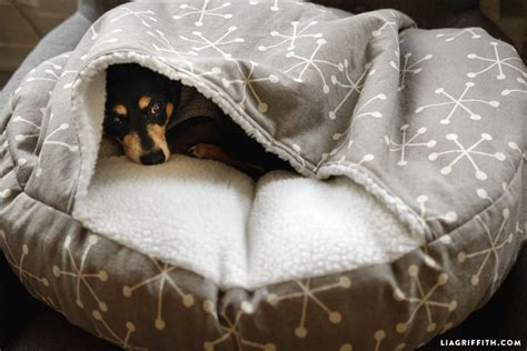 burrow dog bed can you guess our best diy projects of 2017 find out here