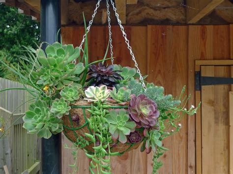 17 best ideas about hanging planters on pinterest tremenheere sculpture garden cornwall related articles