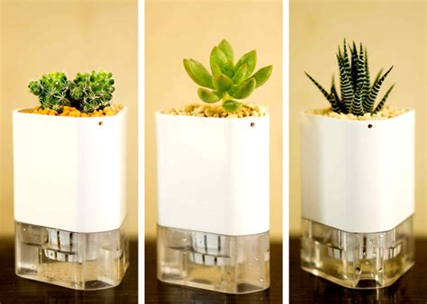 Small Self Watering Pots by Self Watering Modular And Magnetic Quot Connect A Pot Quot Planters