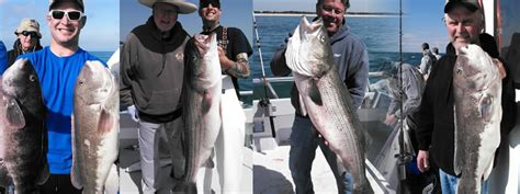 orient point fishing boats orient point fishing charter boat fishy business charters