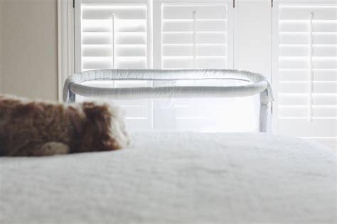 halo pet bed halo pet bed oxgord 1800u0027s newspaper short velvet pet