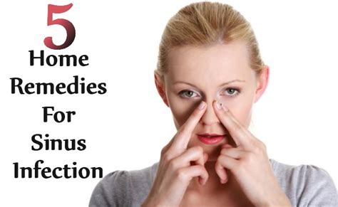 5 best home remedies for sinus infection diy home things