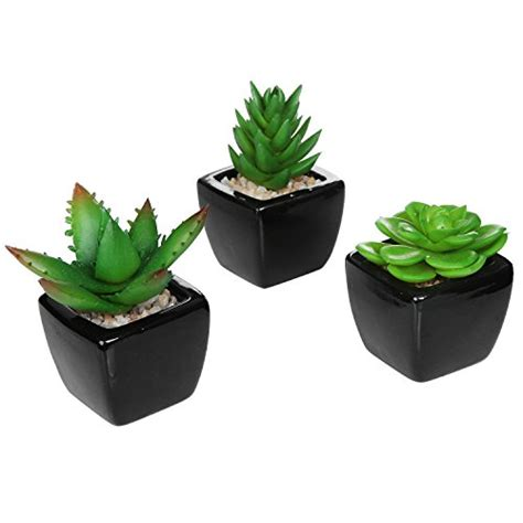 mini potted plants set of 3 modern square black ceramic artificial succulent