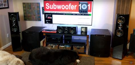 large  small lfe main double bass  subwoofer