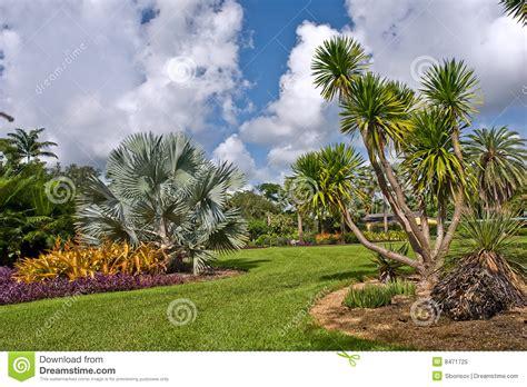 jardin botanique tropical de fairchild photo libre de