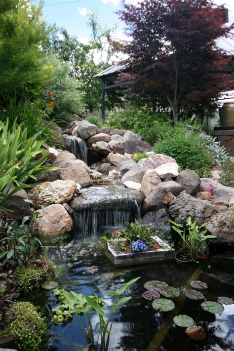 waterfalls in backyard ponds pond and waterfall 2 the dye clan