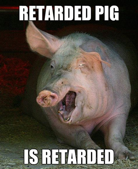 Pig Meme - retarded pig is retarded retarded pig quickmeme