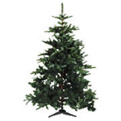 tesco 6ft real look christmas tree review compare