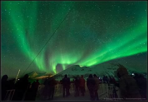 northern lights cruise 2017 northern lights cruise 2013 gallery tours by mwt