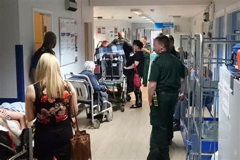 uk emergency room ky shocking image reveals queues in corridor at royal liverpool hospital a e liverpool echo