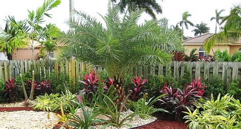bl landscape design photos florida diy