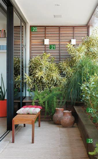 plants for apartments tall plants apartments and patio on pinterest