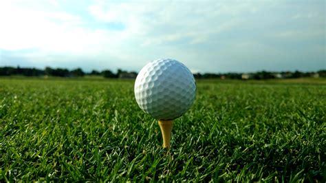 golf balls golf on grass www pixshark images