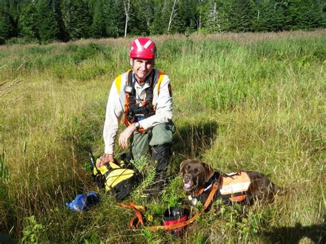 rescue dogs maine maine search and rescue dogs that others may live by susan spisak downeast