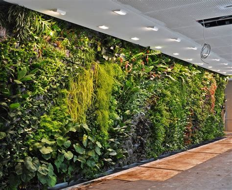 interior garden wall best 25 indoor vertical gardens ideas on wall
