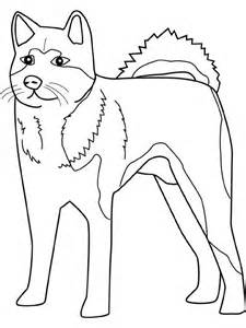 husky coloring pages color pages printable husky coloring sheets