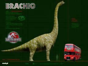 image brachiosaurus size jpg dinopedia the free