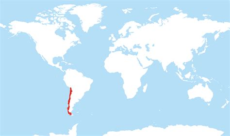 chile located   world map