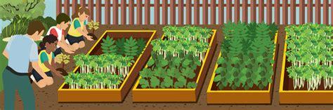 schooled   garden   start  school