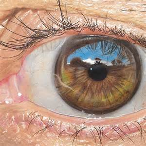 colored pencil drawing colored pencil hyper realistic by 19 year