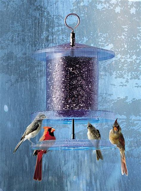 weatherproof all weather bird feeder clear 4 quart