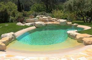backyard cout ideas 17 best ideas about backyard pools on