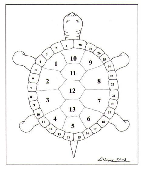 turtle shell template american lunar calender calendar template 2016