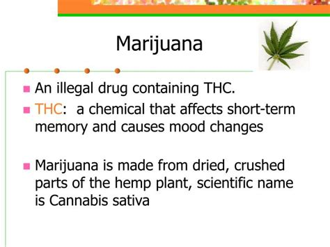 can marijuana cause mood swings ppt marijuana and other illegal drugs powerpoint