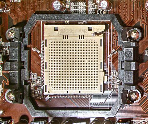 prozessor sockel am2 amd sockel am2 nur mit amd prozessoren kompatibel