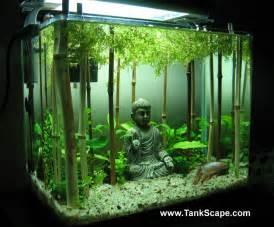 Bamboo Aquascape Ideas Water Plants Aquariums Fish Tanks Decor Buddha