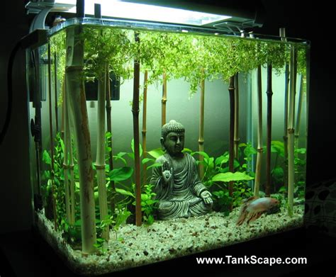 Bamboo Aquascape by Home Aquarium On Aquascaping Aquarium And