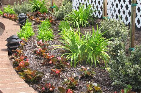 How To Organize Plants In My Garden How To Arrange A Vegetable Garden