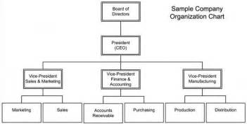 company structure diagram template free company structure chart template company structure