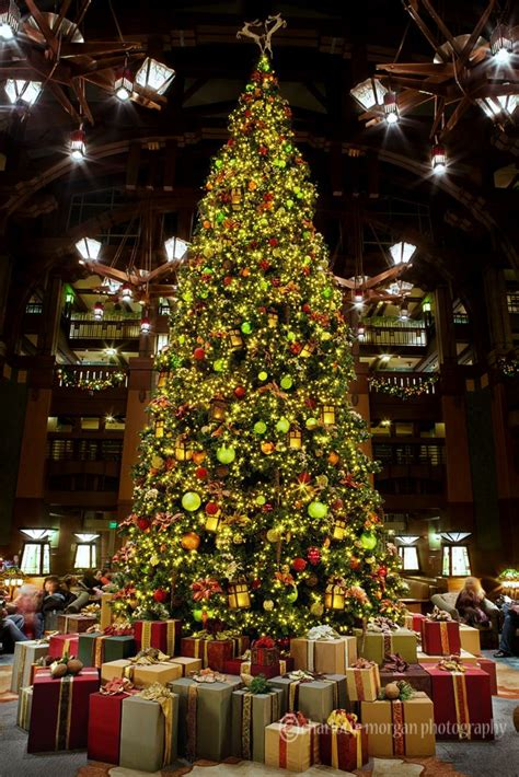 christmas tree in the lobby of disney s grand californian